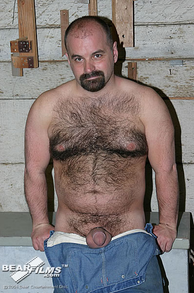 Ted baer hairy bear